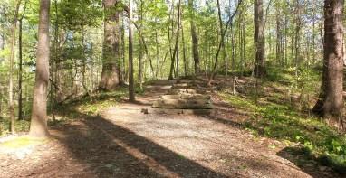 27 Deepdene Park Georgia Trail Steps