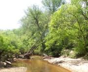 4 Hiking at Mason Mill North Decatur