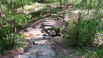 43 Deepdene Park