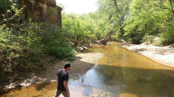 5 Mason Mill Hiking Trails ATL