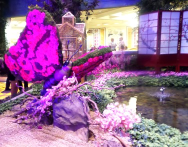 Pink Butterfly Bellagio Japanese gardens