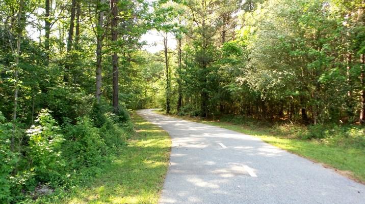 8 Jesters Creek Trail