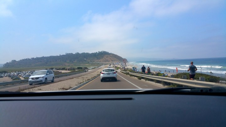 2 Torrey Pines California from the Dash.jpg