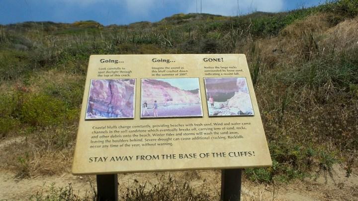 2 Torrey Pines Coastal Bluffs.jpg