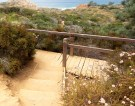 24 Torrey Pines State Reserve Bridge