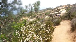 25 Alexis Chateau PR Adventure Travel Torrey Pines