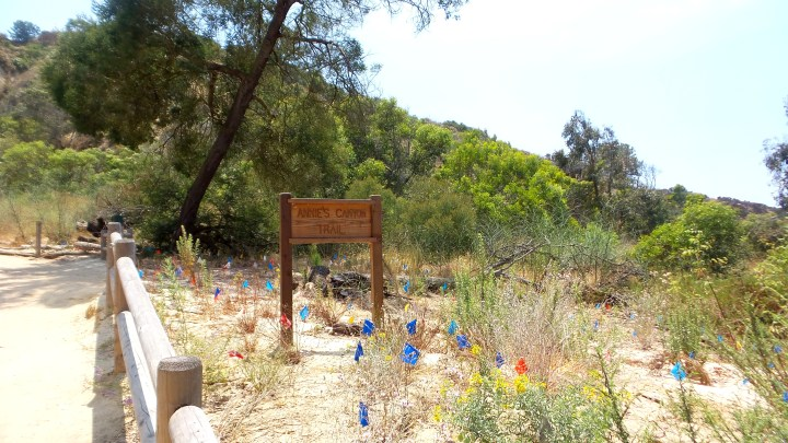 14 Annies Canyon Trail Sign.jpg