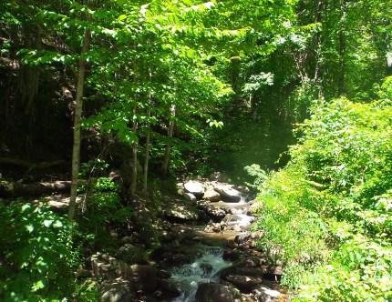 11 Amicalola Falls