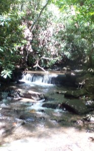 4 Amicalola Falls