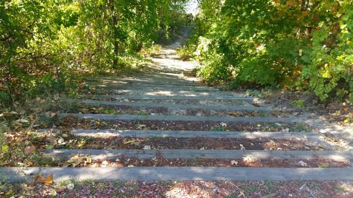 33 Mine Falls Park Steps.jpg