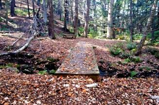 11 Deer Jump Reservation Andover
