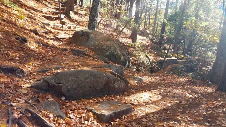 22 Wildcat Falls Hiking Trail in the Fall.jpg