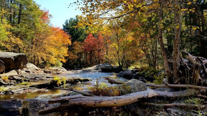 25 Wildcat Falls River