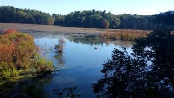 6 Sakowich Reservation New England