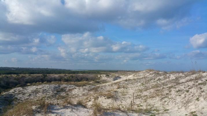 13 Anastasia State Beach Park Sand Dunes