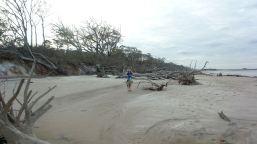 36 Blackrock Beach White Driftwood Winston Murray