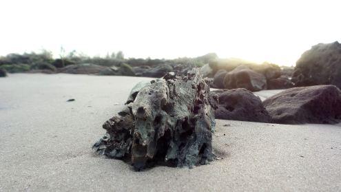 45 Blackrock Beach