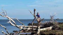 6 Blackrock Beach White Driftwood Winston Murray