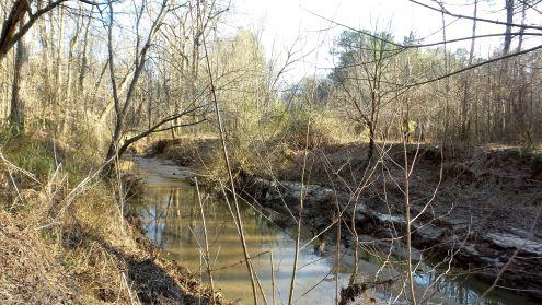 30 Cascade Springs Nature Preserve Utoy Creek