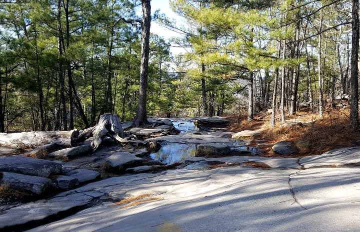42 Stone Mountain GA Hiking Trails