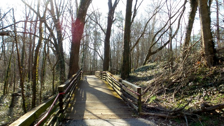 5 Boardwalk Cascade Springs Nature Preserve.jpg