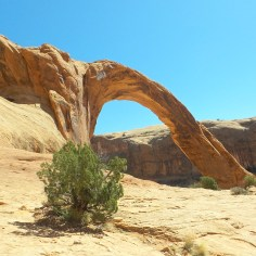 28 Corona Arches Hiking Trail Utah