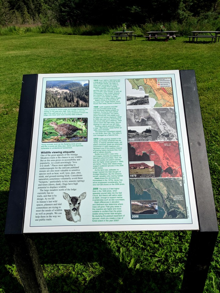 05 Natural History of Amalga Meadows Alaska.jpg