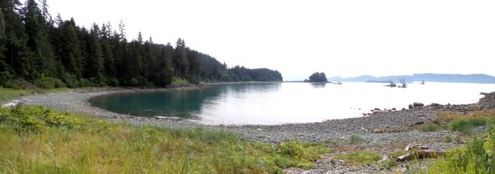 11 Jensen Olson Arboretum Alaska Flowers Ocean View