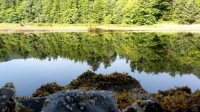15 Sitka National Historical Park Indian River