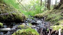 16 West Glacier Trail Juneau Alaska