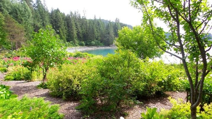 18 Jensen Olson Arboretum Alaska Flowers