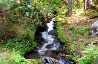 25 West Glacier Trail Juneau Alaska Stream