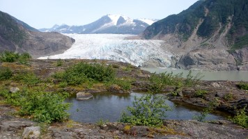 42 Mendenhall Glacier Juneau Alaska