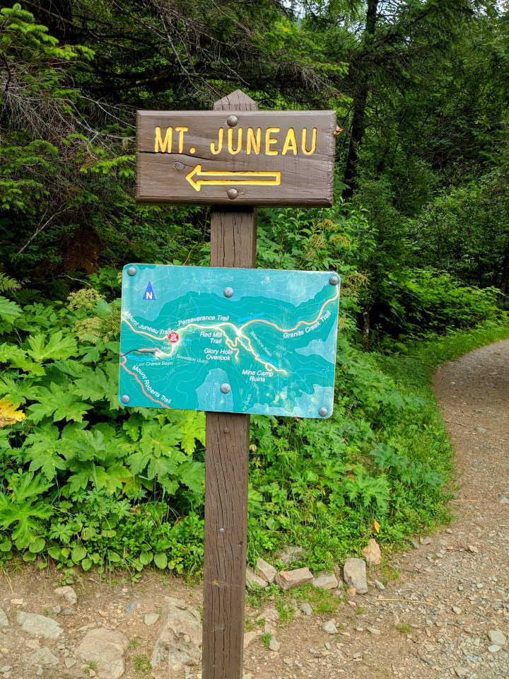 14 Mount Juneau Alaska Hiking Trail.jpg