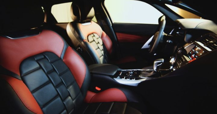 The New Driver Series: The Top 5 Accessories You Need for Your First Car (No Ads)