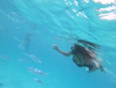 Alexis-Chateau-Maldives-Snorkelling-1