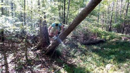 twotonetheartist michael tree