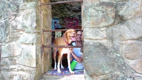 graffiti dog owner lullwater park brian mott