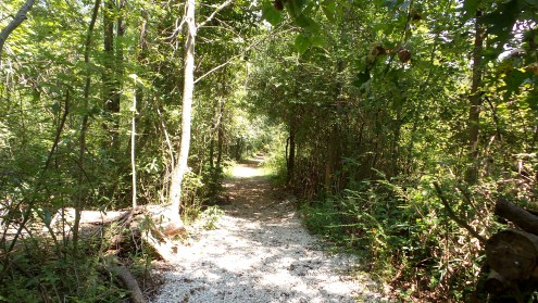 Constitution Lakes Hiking Trail