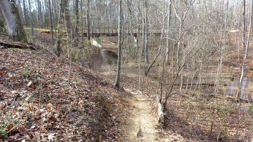 15-clayon-county-international-park-big-bridge