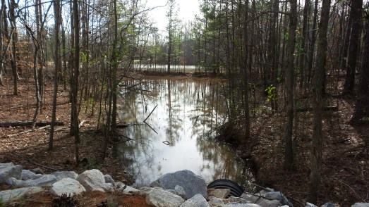 38-waterscape-on-hiking-trail