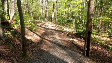 40 Depende Park Hiking Trail