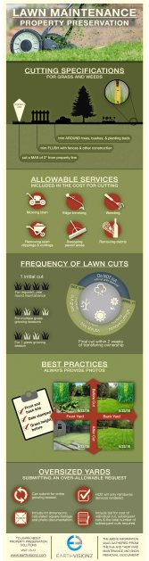 Lawn Maintenance Infographic