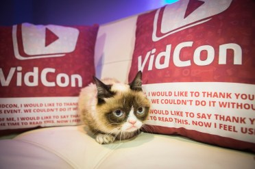 """Friskies® """"official spokescat,"""" Grumpy Cat helped announce the third annual """"The Friskies"""" awards, for the best Internet cat videos of the year, during VidCon at the Anaheim Convention Center, Friday, June 27, 2014, in Anaheim, Calif. Fans can enter """"The Friskies"""" at www.TheFriskies.com. (Bret Hartman/AP Images for Friskies)"""