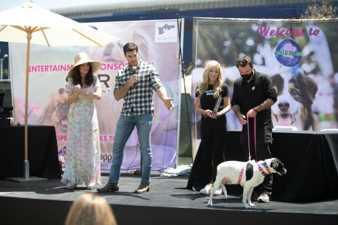 Vanderpump Dogs Fashion Show at the 5th Annual World Dog Day