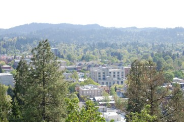 view from south overlook