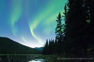 aurora-borealis-1
