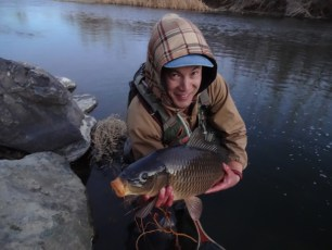 1/20/14: I thought this carp was a huge brown trout when I first hooked it. Dissapointment and humor are friends in fishing.