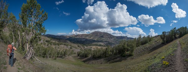 Looking north towards Sonora Pass