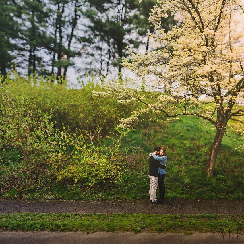 Arnold Arboretum Lilac Engagement Photos (1)